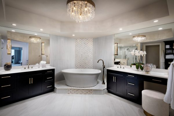 Master Bathroom 01